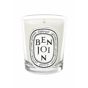 Vela perfumada BENJOIN 190gr Diptyque